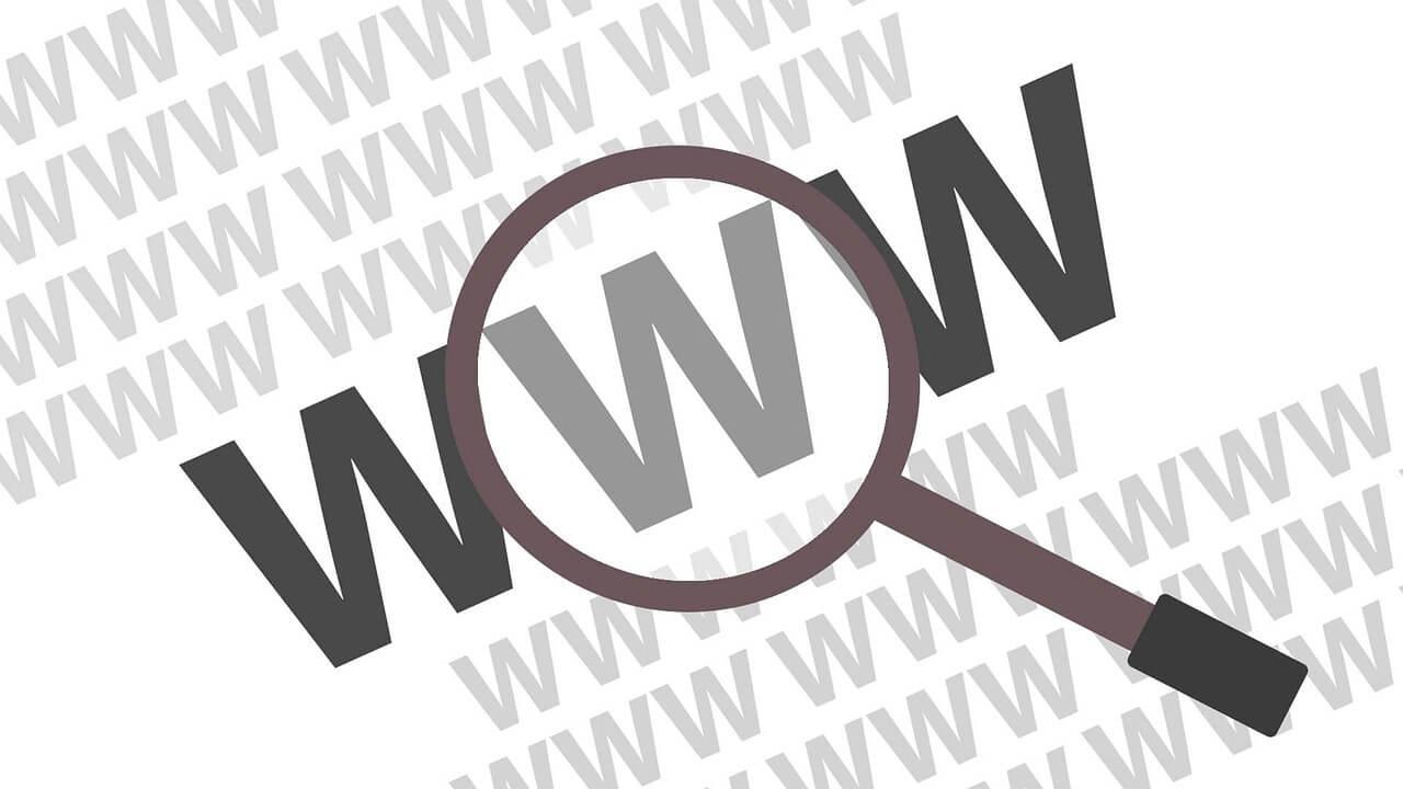 domena dla strony www
